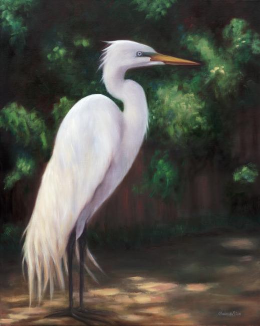 Almerinda silva fine art for White heron paint